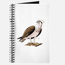 Osprey Bird of Prey Journal