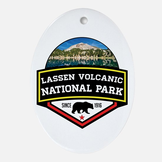 Cute Volcanic Oval Ornament