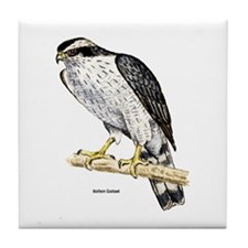 Northern Goshawk Hawk Tile Coaster