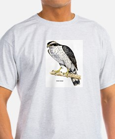 Northern Goshawk Hawk (Front) Ash Grey T-Shirt
