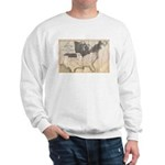 1861 Map Sweatshirt