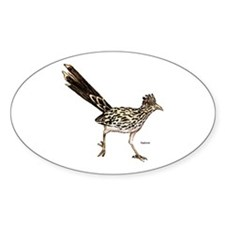 Roadrunner Bird Oval Decal