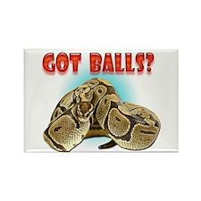Python Snake - Got Balls Rectangle Magnet