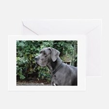 Blue Great Dane head Greeting Cards