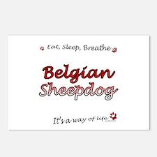 Belgian Sheep Breathe Postcards (Package of 8)