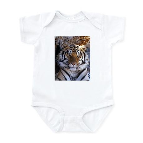 Tiger Infant Creeper
