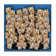 YORKSHIRE TERRIER DOGS Tile Coaster