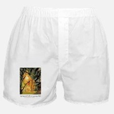 Spring and Fall: Goldengrove Unleaving Boxer Short
