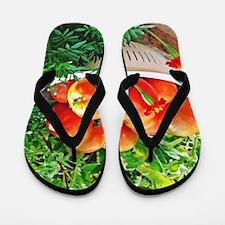 Garden Goodies Flip Flops