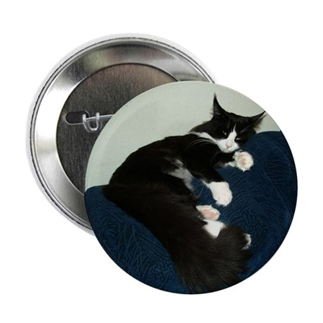 """B&W Maine Coon Cat Draped 2.25"""" Button (10 pack)"""