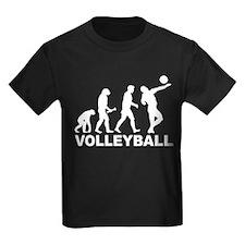 Volleyball Evolution T