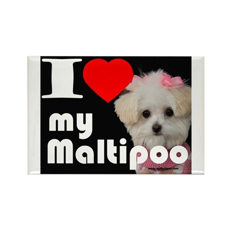 NEW I LOVE My Maltipoo Rectangle Magnet