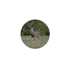 Four Point Buck Mini Button (10 pack)