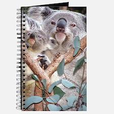 Helaine's Koala and Joey Journal