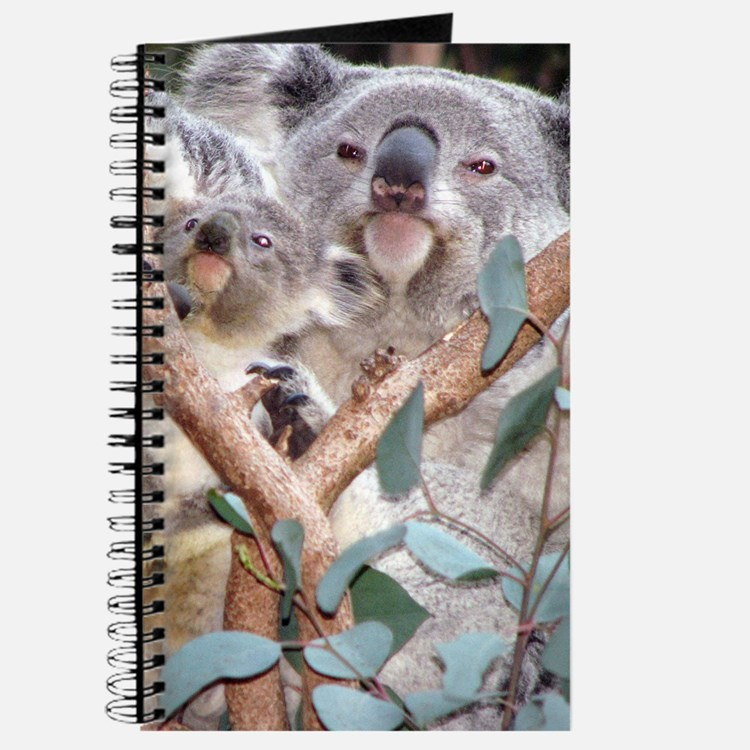 Helaine's Koala and Joey Journal
