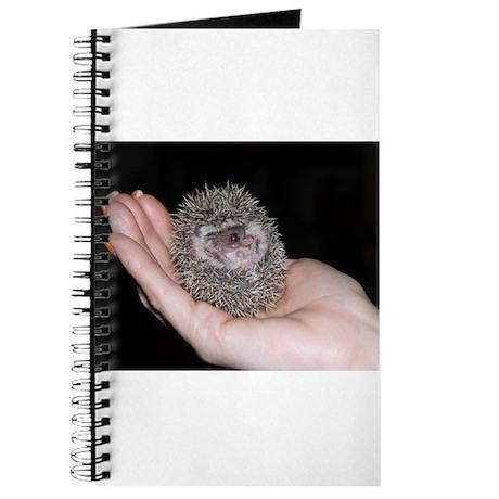 Hardly a Handful Hedgehog Journal