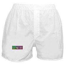 TRIATHLON SILHOUTTE NEGATIVE Boxer Shorts