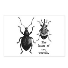 Cute Bugs and insects Postcards (Package of 8)