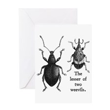 Funny Insect Greeting Card