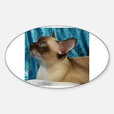 Cute Tonkinese Sticker (Oval)