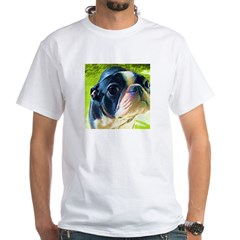 Baby Face Boston Terrier Shirt