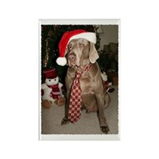 Cooper at Christmas Rectangle Magnet