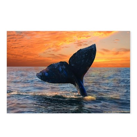 WHALE DREAMS Postcards (Package of 8)