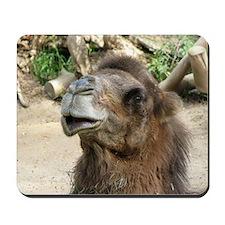 Helaine's Camel Mousepad
