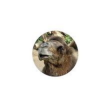 Helaine's Camel Mini Button