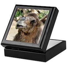 Helaine's Camel Keepsake Box