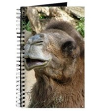 Helaine's Camel Journal
