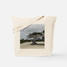 Carmel Beach Landscape Tote Bag