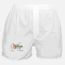 Cute Students Boxer Shorts