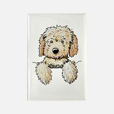 Pocket Doodle Pup Rectangle Magnet