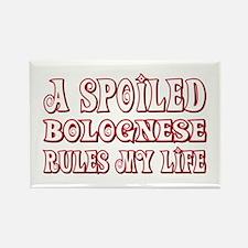 Spoiled Bolognese Rectangle Magnet (10 pack)