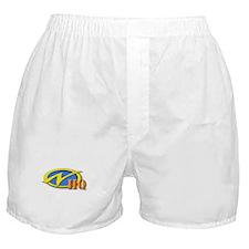 Cool Nerfing Boxer Shorts