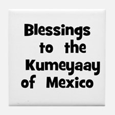 Blessings  to  the  Kumeyaay  Tile Coaster