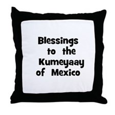 Blessings  to  the  Kumeyaay  Throw Pillow