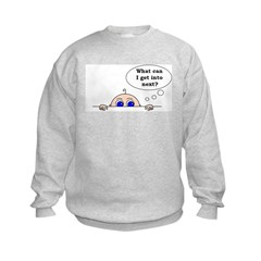 WHAT CAN I GET INTO NEXT? Sweatshirt