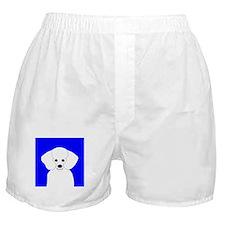 Poodle (White) Boxer Shorts