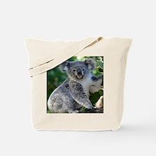 Cute cuddly koala Tote Bag