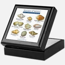 Shell I.D. Guide Keepsake Box