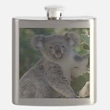 Cute cuddly koala Flask