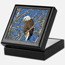Magnificent Bald Eagle Keepsake Box