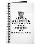 Never Misunderestimate the Po Journal