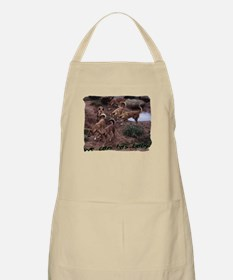can has baby BBQ Apron