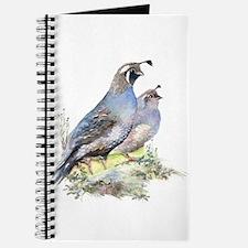 Watercolor California Quail Bird Nature ar Journal