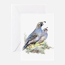Watercolor California Quail Bird Na Greeting Cards