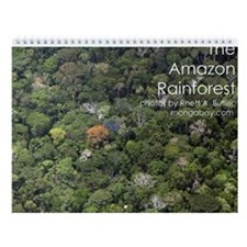 Amazon Rainforest Wall Calendar