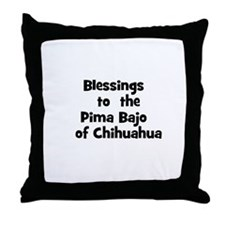 Blessings  to  the  Pima Bajo Throw Pillow